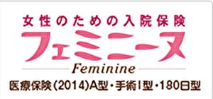 損保ジャパン日本興亜ひまわり生命保険(フェミニーヌ)