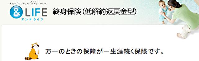 三井住友あいおい生命(&LIFE終身保険)