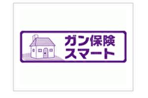 三井住友海上あいおい生命 ガン保険スマート